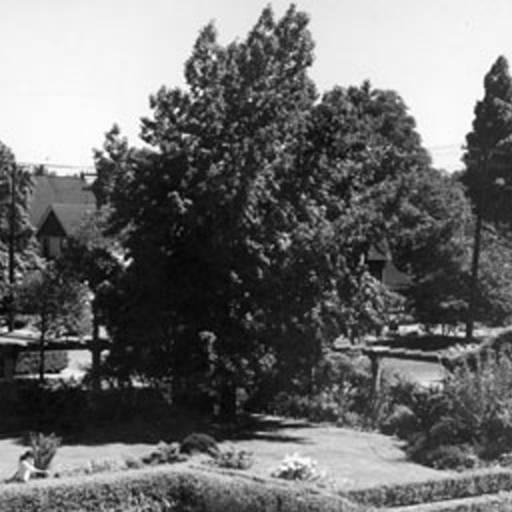 School - Memorial - pic5